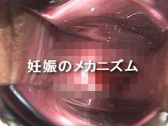 かわいゆい・涙の生肉便器 無修正画像36