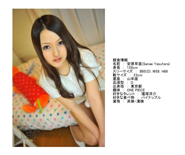 安原早苗 Sanae Yasuhara