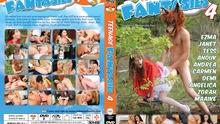 DVDSTP40613